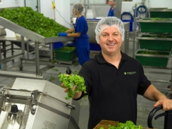 Local Input~ Adrian Quinn, President of Brandneu Foods Canada Inc., in the kale production area of their plant in Cobourg, ON. Photo by Chris Oliver