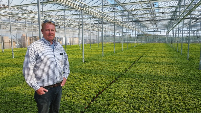 Ontario Greenhouse Business Enhances its Competitive Edge with Growing Forward 2 Funding