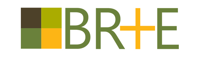 Insights from 11 BR+E Projects Across Ontario