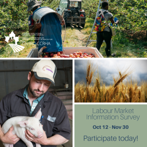 CAHRC LMI Graphic 3 revised (2)