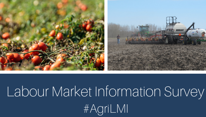 Agriculture Labour Market Survey: Available until November 30