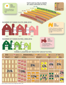 Peel Agriculture Infographic