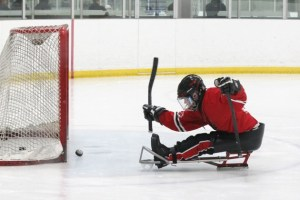 Person playing sledge hockey