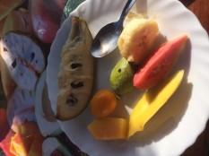 A variety of fruits produced at Finca San Ramon